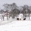 Calumet Winter 2