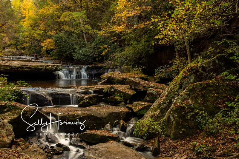 Bark Camp Creek cascades 5
