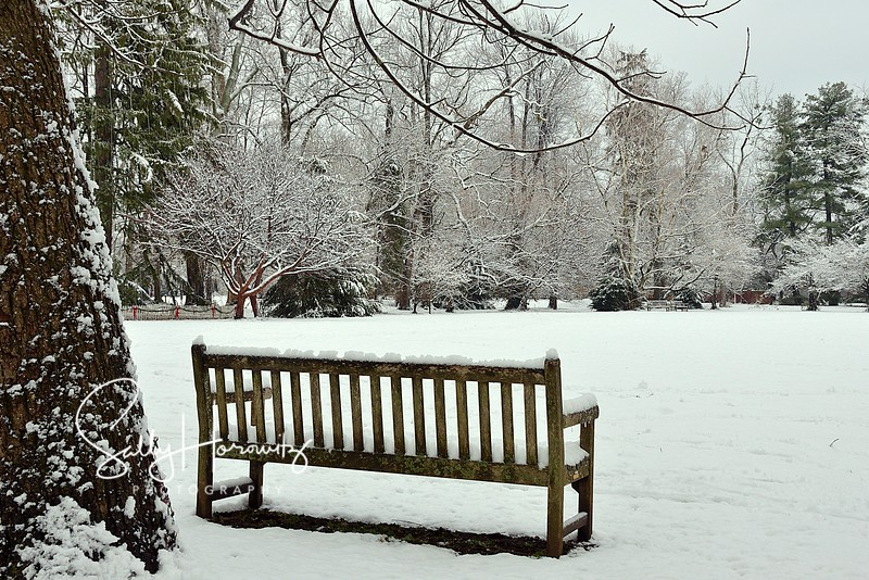 Winter at Ashland, the Henry Clay estate