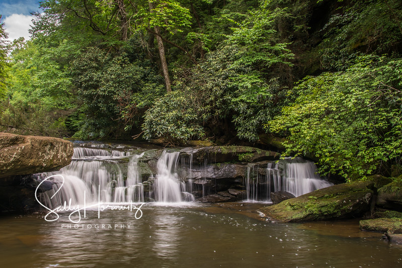 Bark Camp Creek cascades -2