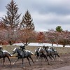 Thoroughbred Park 2
