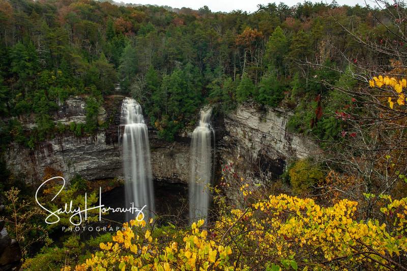 Fall Creek Falls and Coon Creek Falls