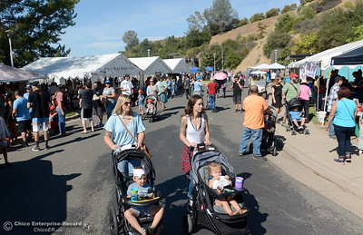 Lots of people arrive at the Feather River Fish Hatcherly to see the salmon spawning and visit booths during the Salmon Festival in Oroville, Calif. Saturday, Sept. 22, 2018.(Bill Husa -- Enterprise-Record)