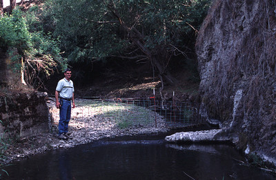 """Whiskey Creek """"after"""" removal of a dam preventing migration of salmonid fish species. June 20, 2002."""