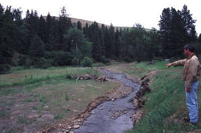 After riparian plantings and placement of large organic debris for restoring salmon habitat. June 8, 2001.