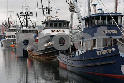Salmon fishing boats at Fishermen's Terminal, Seattle.
