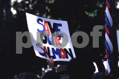 SaveSalmon
