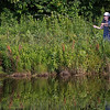 150725-Pond Fishing-IMG_0517 copy