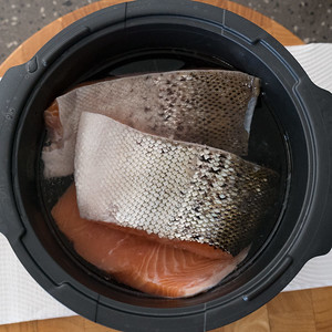 Salmon in brining water
