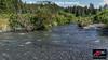 Chum Salmon spawning habitat