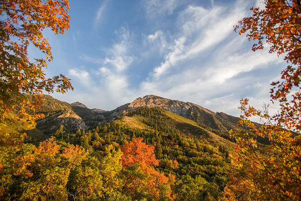 Autumn on Mount Olympus