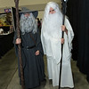 Gandalf the Grey and Saruman