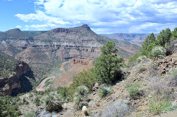 Salt River Canyon (2018)