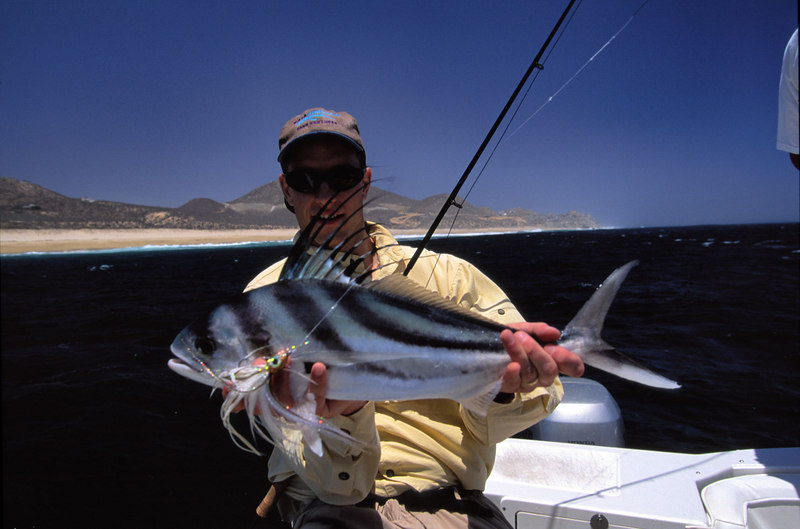 Roosterfish, Ross Purnell, Cabo, Blue Water Fly Fishing
