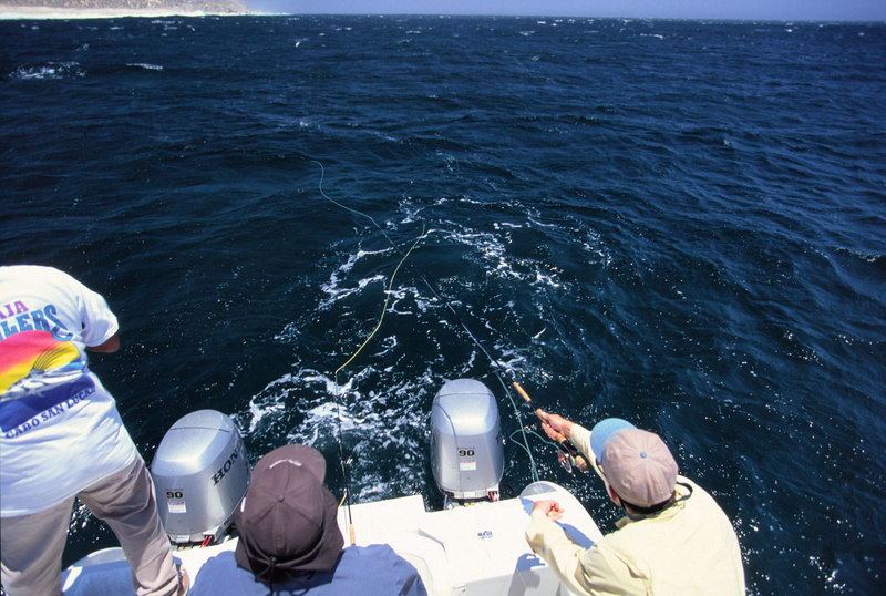Teasing and casting to roosterfish, Blue Water Fly Fishing