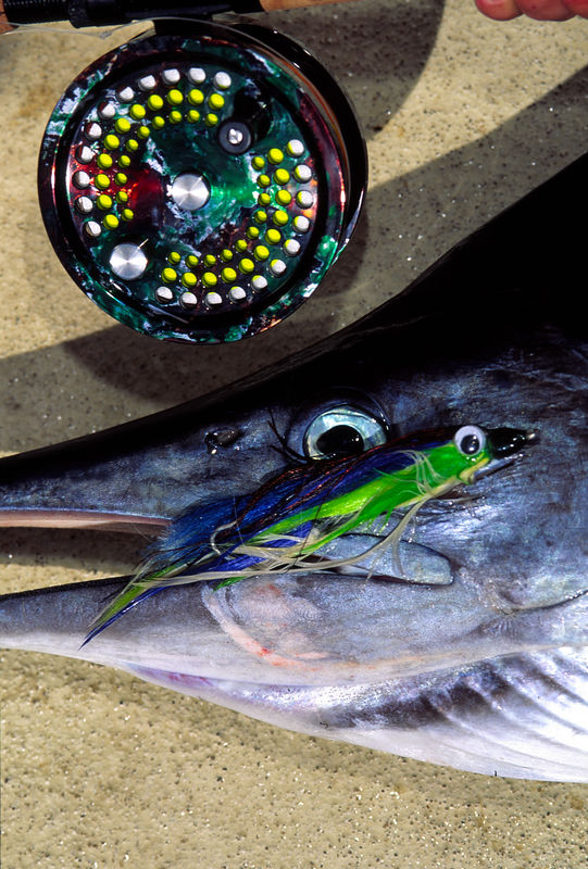 Marlin, Fly Reel, and Fly, Blue Water Fly Fishing