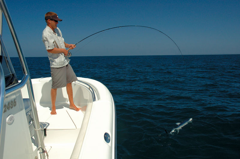 Landing Mako Shark, Dave Trimble, San Diego, CA., Blue Water Fly Fishing