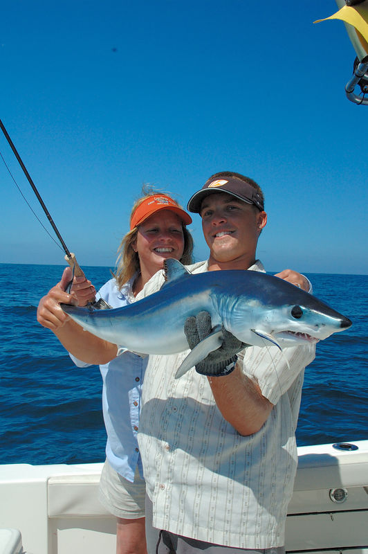 Mako Shark,Wendy Gunn,  Dave Trimble, San Diego, CA., Blue Water Fly Fishing