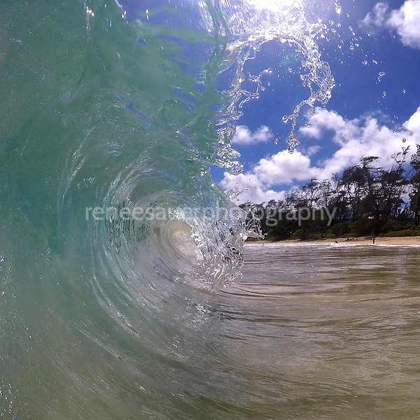 perfect little wave in oahu