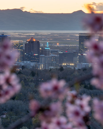 Salt Lake City Framed by Spring