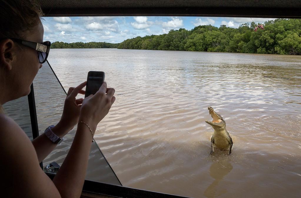 Tourists taking photos of jumping crocodiles