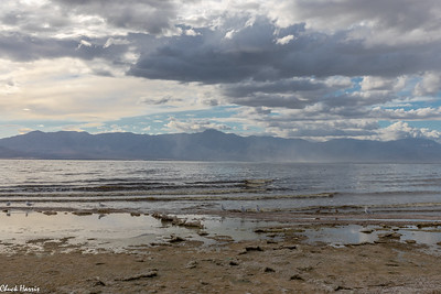 Chuck Harris Salton Sea