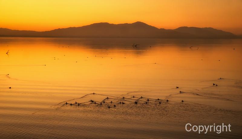 Salton Sea Golden Sunset