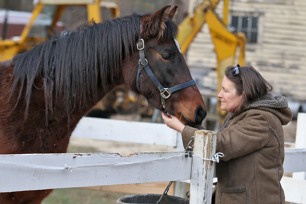 . Julie Grant feed the horses she and her husband Sam Grant own on their farm in Townsend MA on Tuesday afternoon. They dress up and re-enact Gen. Ulysses S. Grant and his wife. SENTINEL & ENTERPRISE/JOHN LOVE