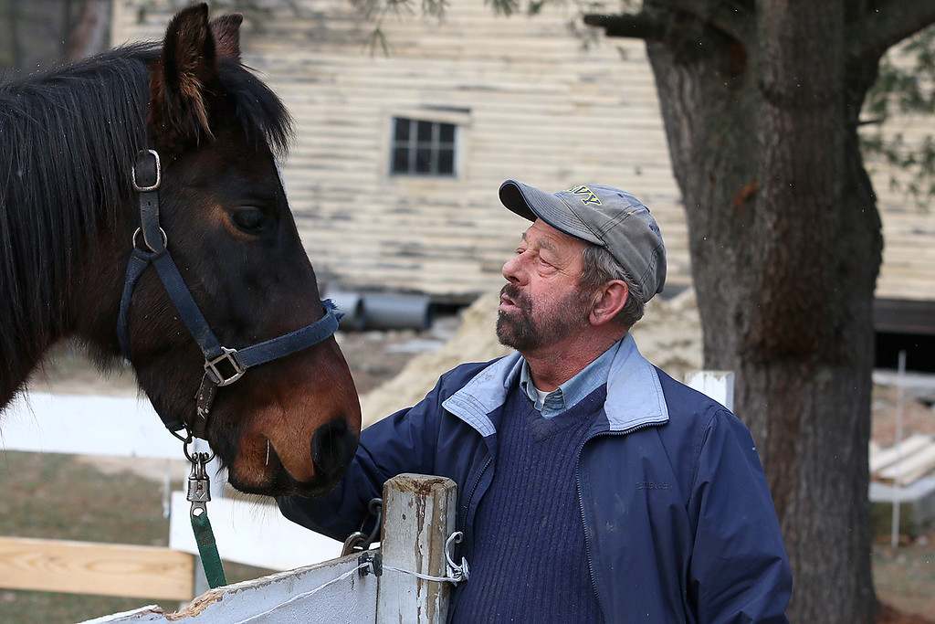 . Sam Grant, who re-enact Gen. Ulysses S. Grant, with his horses at his home in Townsend MA. SENTINEL & ENTERPRISE/JOHN LOVE