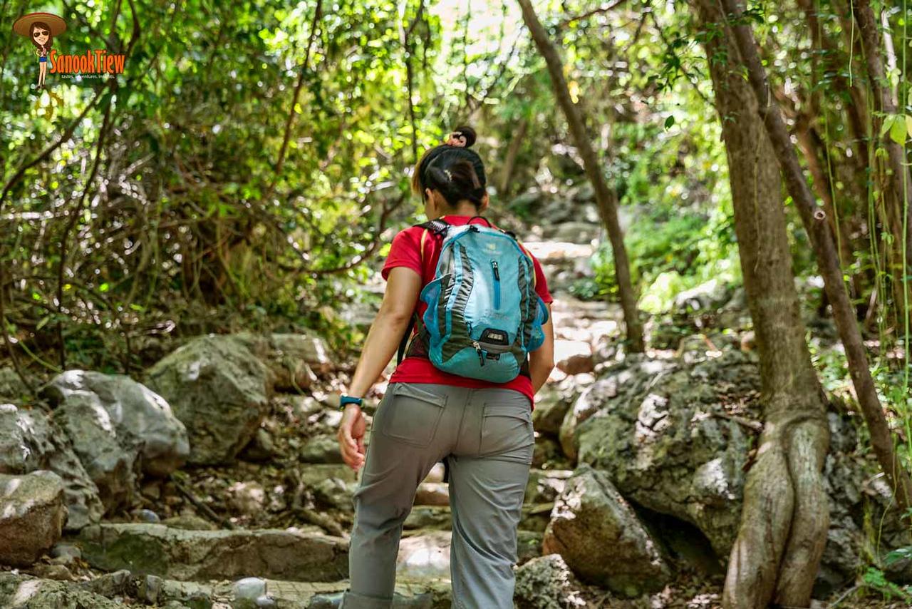 เส้นทางเดินไป ถ้ำพระยานคร ชัดเจน และ เดินไม่ยากค่ะ