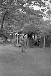 Upper Meherabad   16