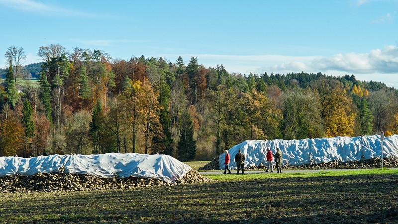 Thurgau.  »Der Frauenfelder«. Frauenfeld – Wil – Frauenfeld. Schweiz, 16. November 2014.