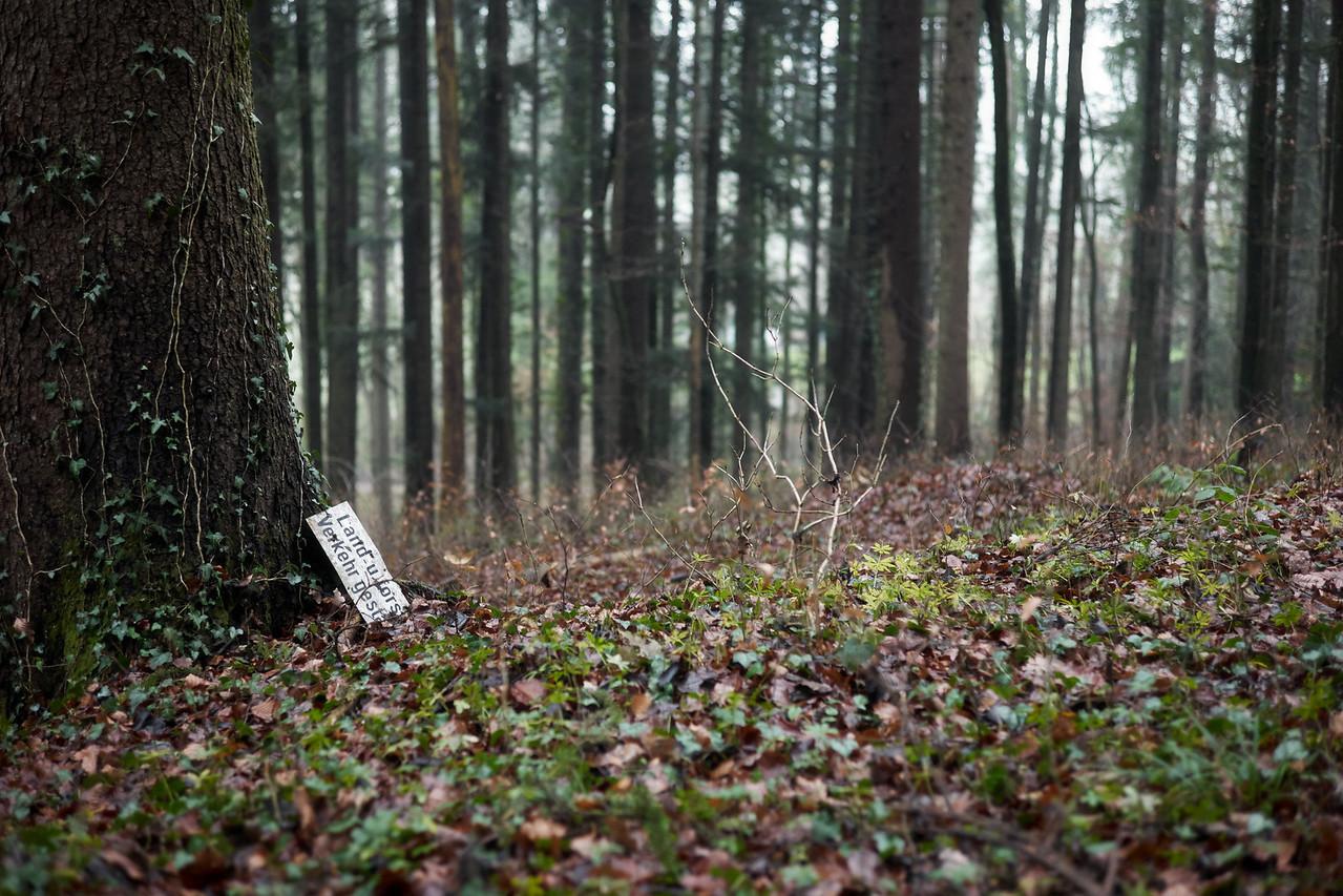 Land- und Forstverkehr gestattet.