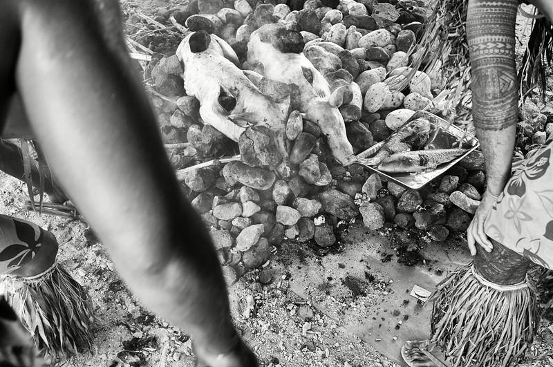 """Préparation d'un """"umu"""" (cuisson traditionnelle d'aliments sur un sol recouvert de pierres brûlantes) à l'occasion des festivités de Teuila. Ile d'Upolu/Archipel des Samoa"""