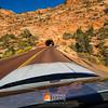 AVIS 2017 - Mustang Vegas 022A - Deremer Studios LLC