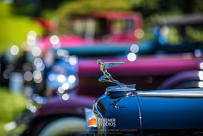 2019 Misselwood Concours - Beverly MA 113A - Deremer Studios LLC
