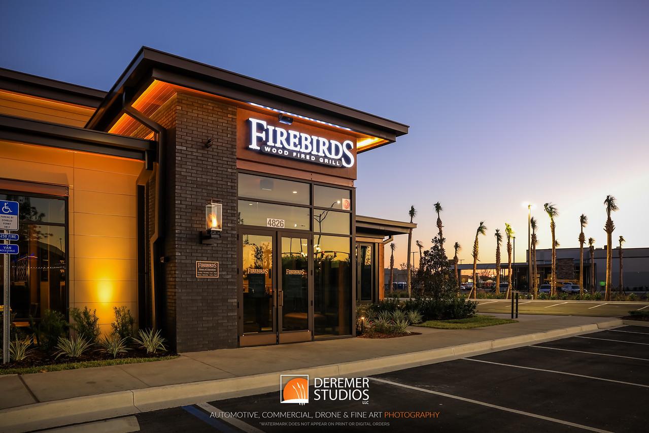2017 Firebirds Jacksonville Opening 008A - Deremer Studios LLC