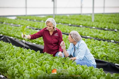 2018 Produce Growers - Traders Hill Aquaponics 024A - Deremer Studios LLC