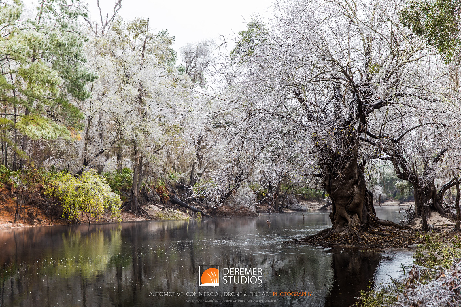 2018 Florida Icepocalypse Winter Storm 027A - Deremer Studios LLC