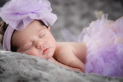 Harper_Newborn-13