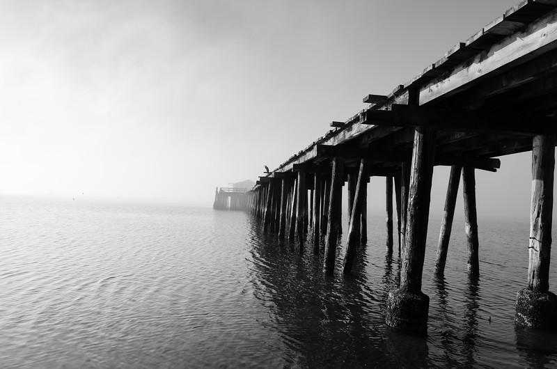 Princeton Pier