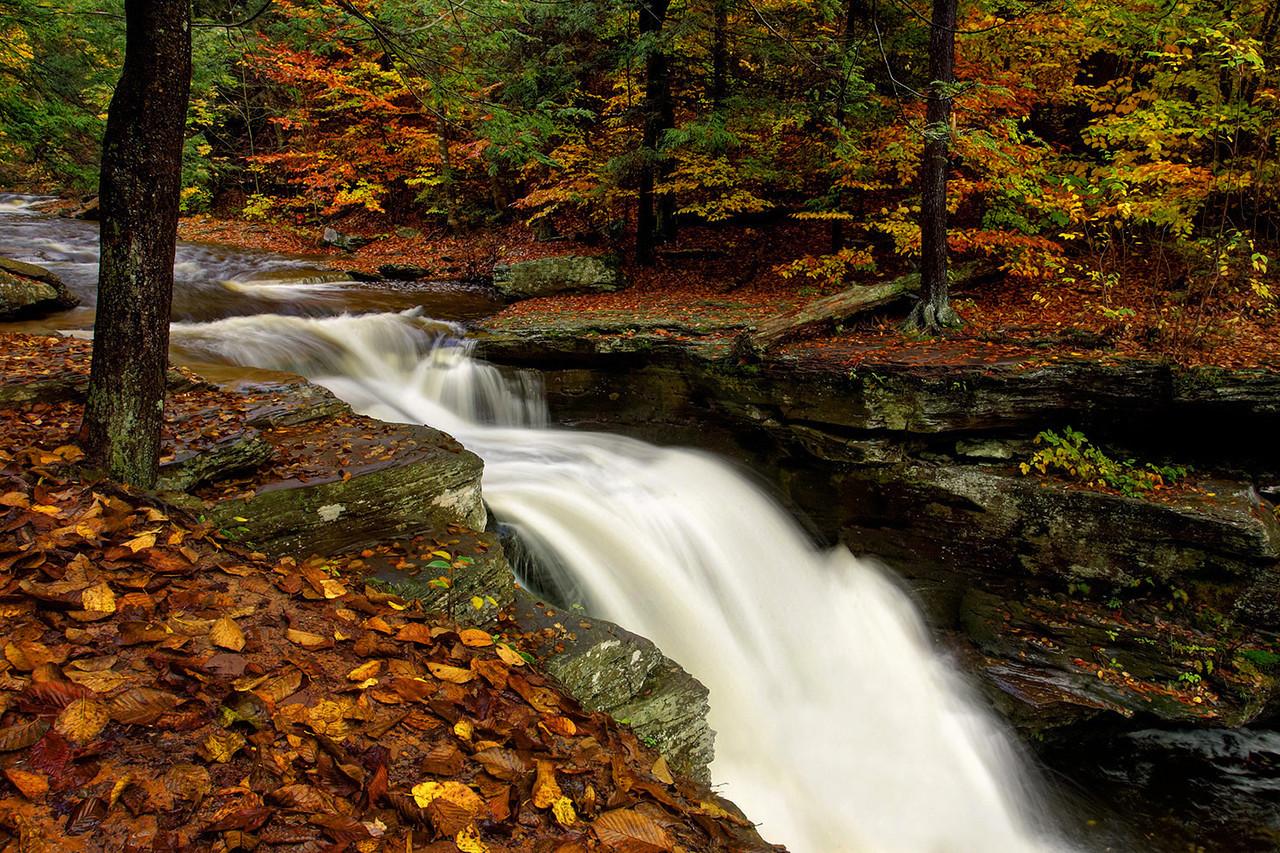 Murray Reynolds Falls