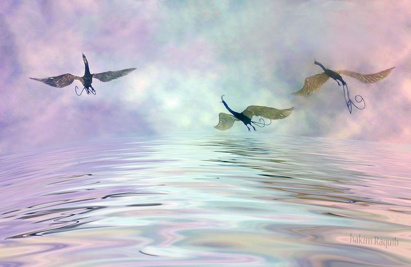 Three flying Spirit birds (with background by Hakim Raquib)