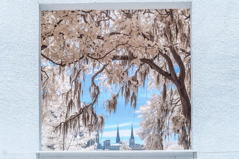 Window to the World. Savannah, GA, 2013.