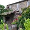 Toscano - Podere Terreno
