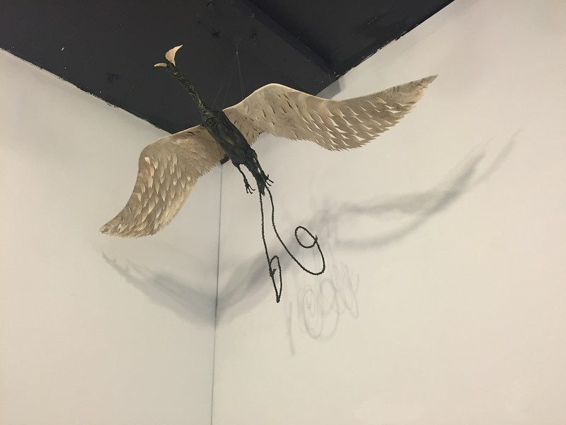 Dowlinger, the spirit bird