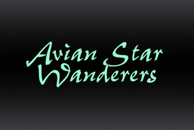 Avian Star Wanderers and Spirit Birds