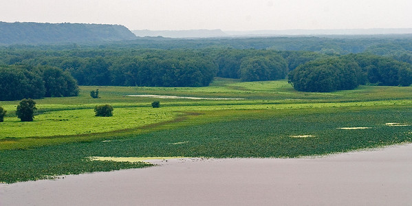 Upper Mississippi River Bottomlands