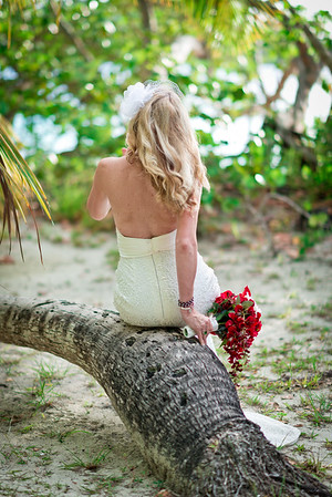 Wedding, Destination Wedding, Trunk Bay