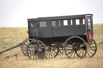 Amish buggies in Crab Orchard, Kentucky